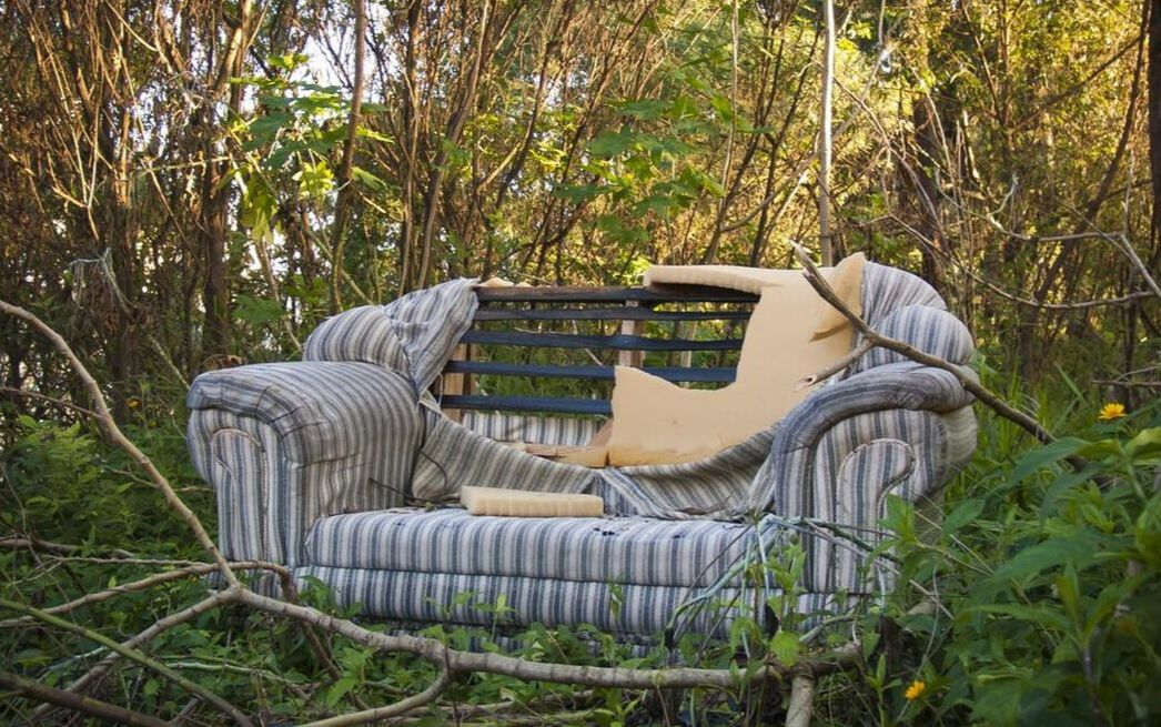 Couch In The Woods